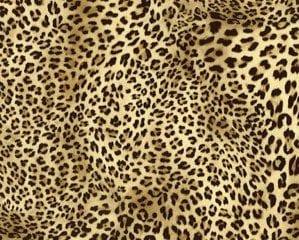 Flexfolie speciaal luipaard leopard SS 3717 City Plotter Zaandam
