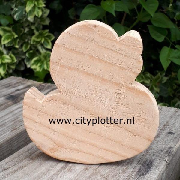 houten eend cityplotter zaandam